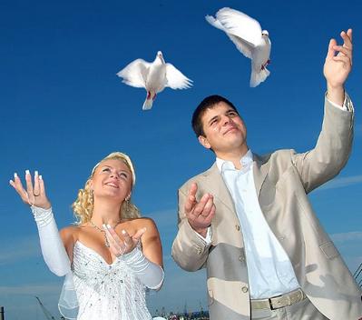 полёт голубей
